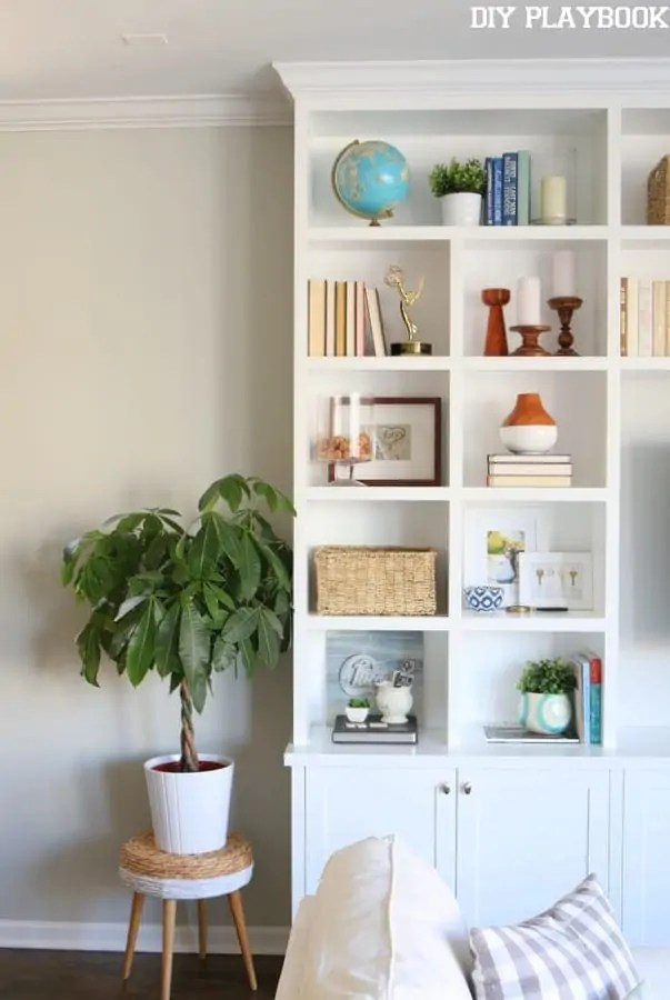 built-ins-accessories-plant-family-room