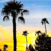 arizona-sunset