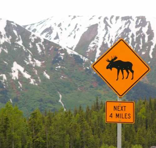 Alaska_travel-14