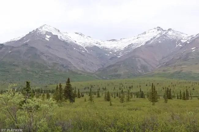 Alaska_travel-66