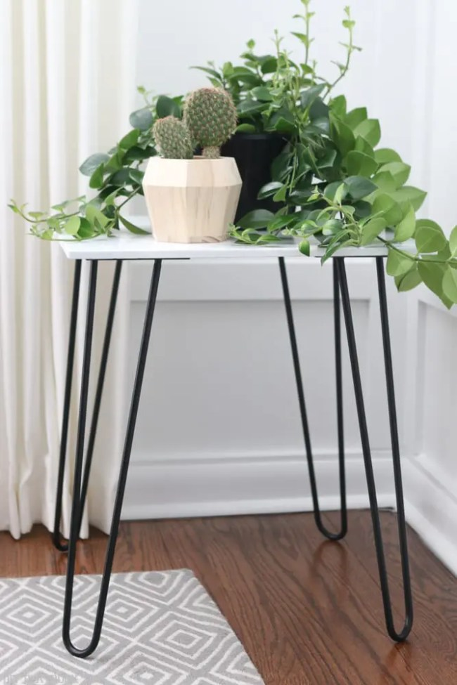 hairpin_table_tutorial_plant-4