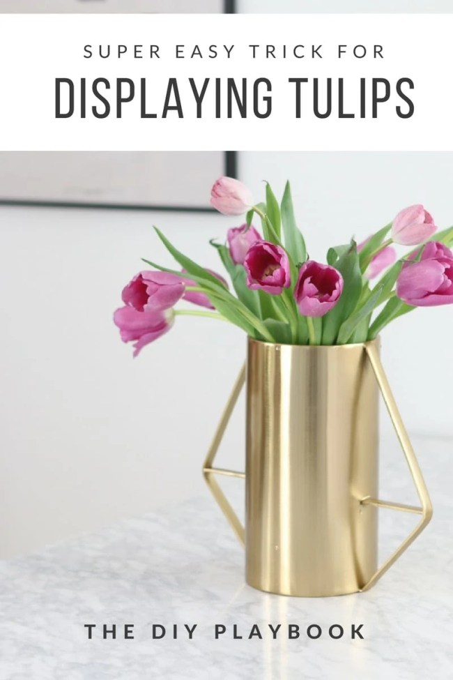 how to display tulips