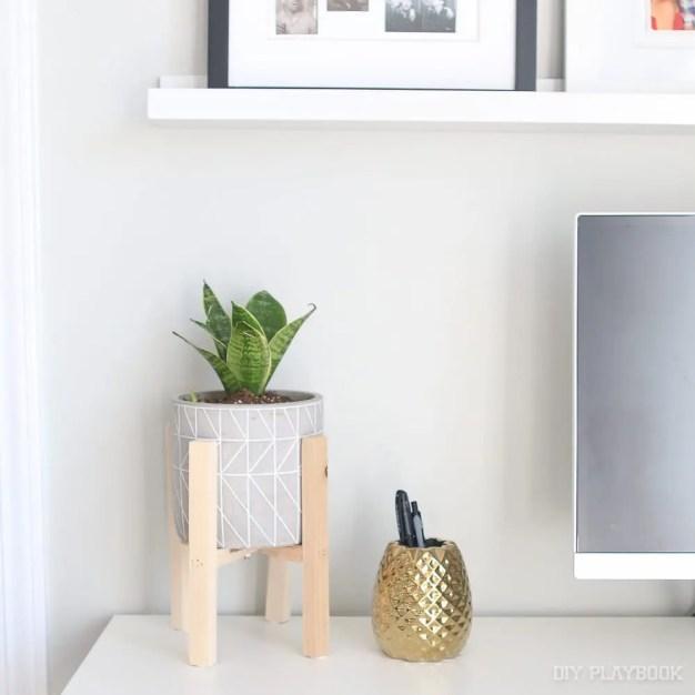 small indoor plants, best indoor plants, snake plant
