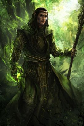 Male druid with staff