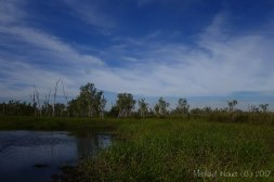 Northern Territory 2017 - 2419