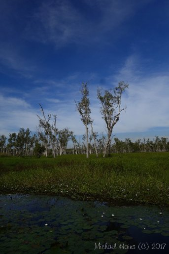 Northern Territory 2017 - 2423