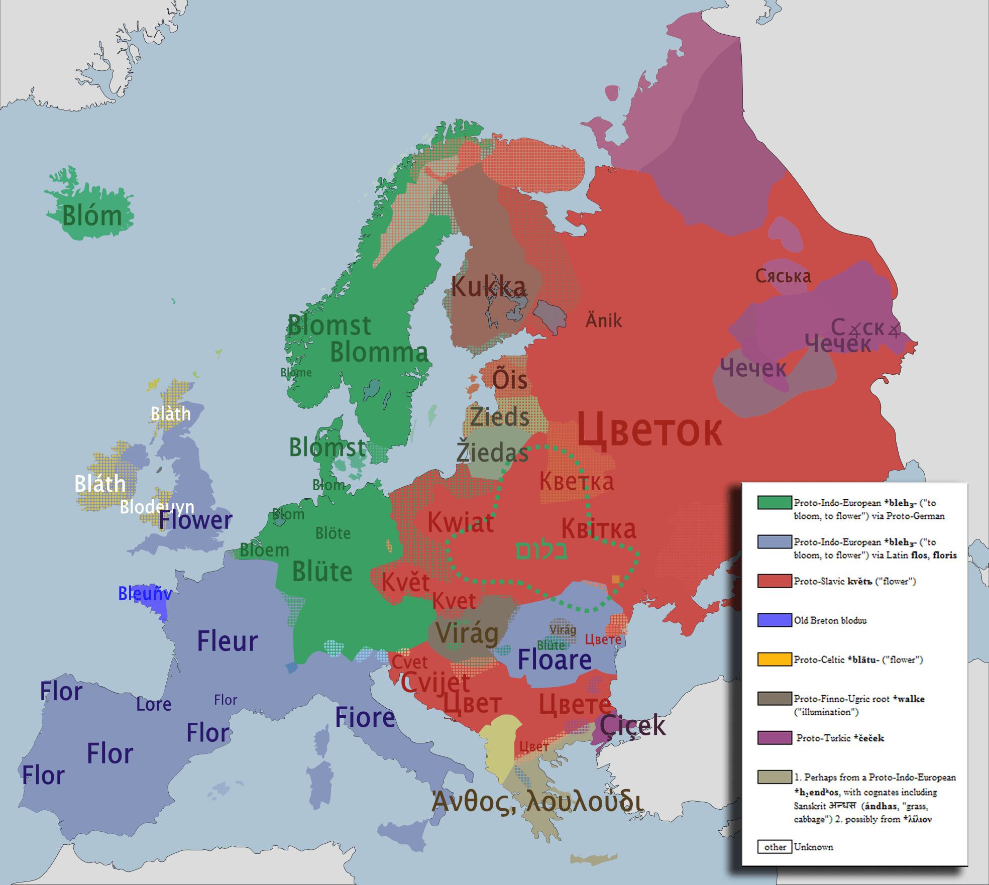 Charming The Word For Flower In Various European Languages. Source: Link
