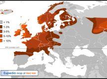 The Viking Origins Of The Red Hair Gene