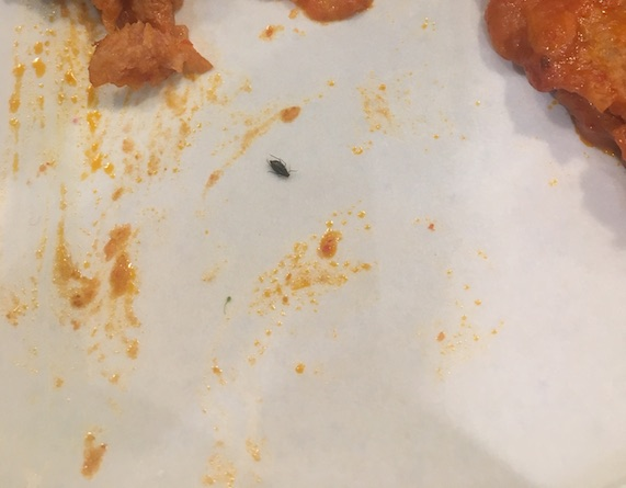 An aphid on my plate of broccoli