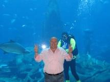 Fishy Atlantis Hotel Aquarium Garo