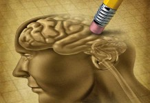 Memory manipulation brain and eraser