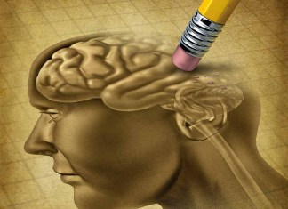 Memory manipulation brain and eraser