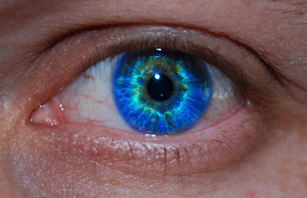 medium resolution of eyelid basal cell carcinoma