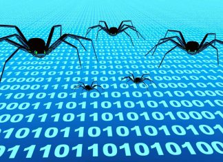 Spiders crawling data 1597 x 881 px