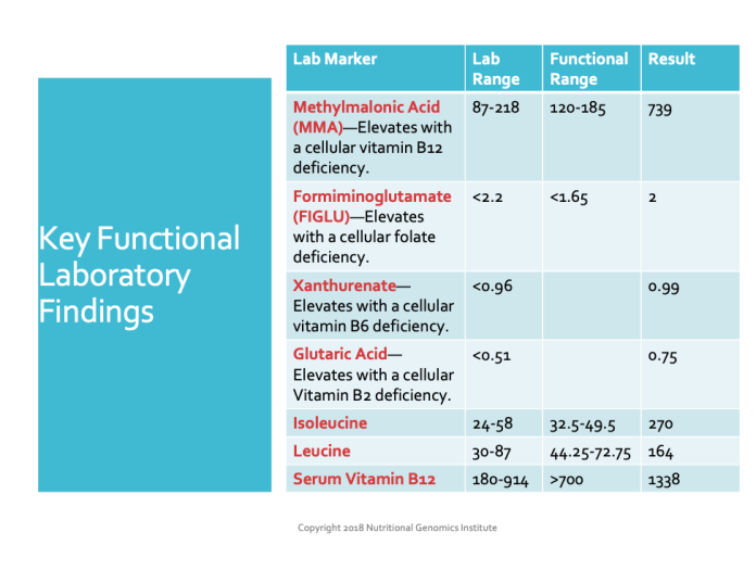 Key functional lab findings personalized nutrition slide 974 x 752