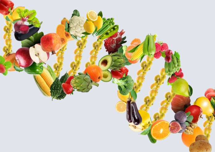 Nutrigenetics concept DNA strand made with healthy fresh vegetables and fruits 1218 x 861