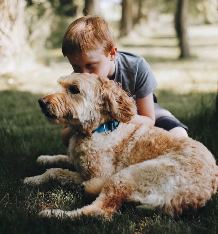 Boy hugging his dog 1500 x 1613