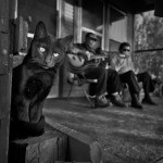 Skip, Duck, and the Grammy Awards: The Rise of the Bentonia Blues by Paloma Alcala
