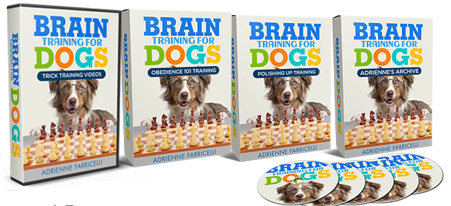What's included in the Brain Training for Dogs Program