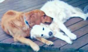 Candice (r) and her boyfriend Rudy ©