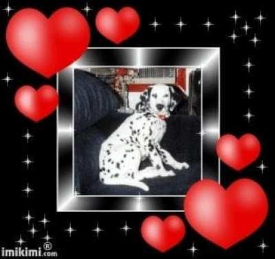 Our Beautiful Tasha ♥