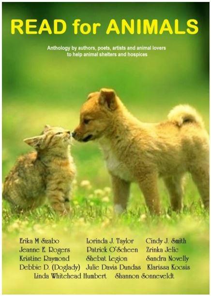correct book cover