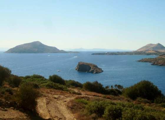 From nature - Attica, Greece