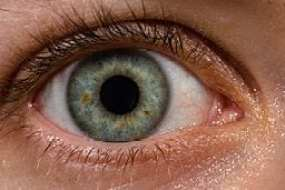 petrified eye