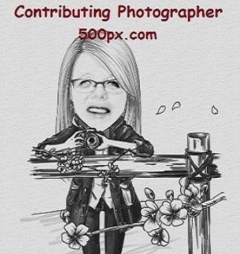 Contributing Photographer, 500px.com