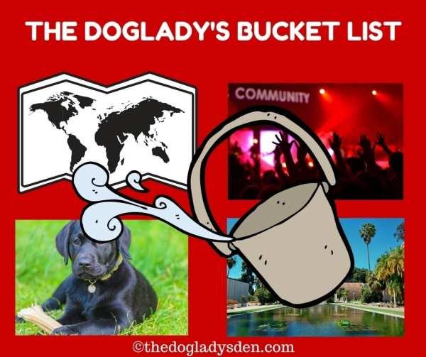 BUCKET LIST | TOP TEN THURSDAY | THE DOGLADY'S DEN