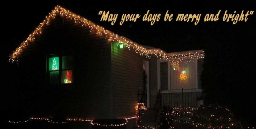 The Doglady's Den; lit up for the Holidays