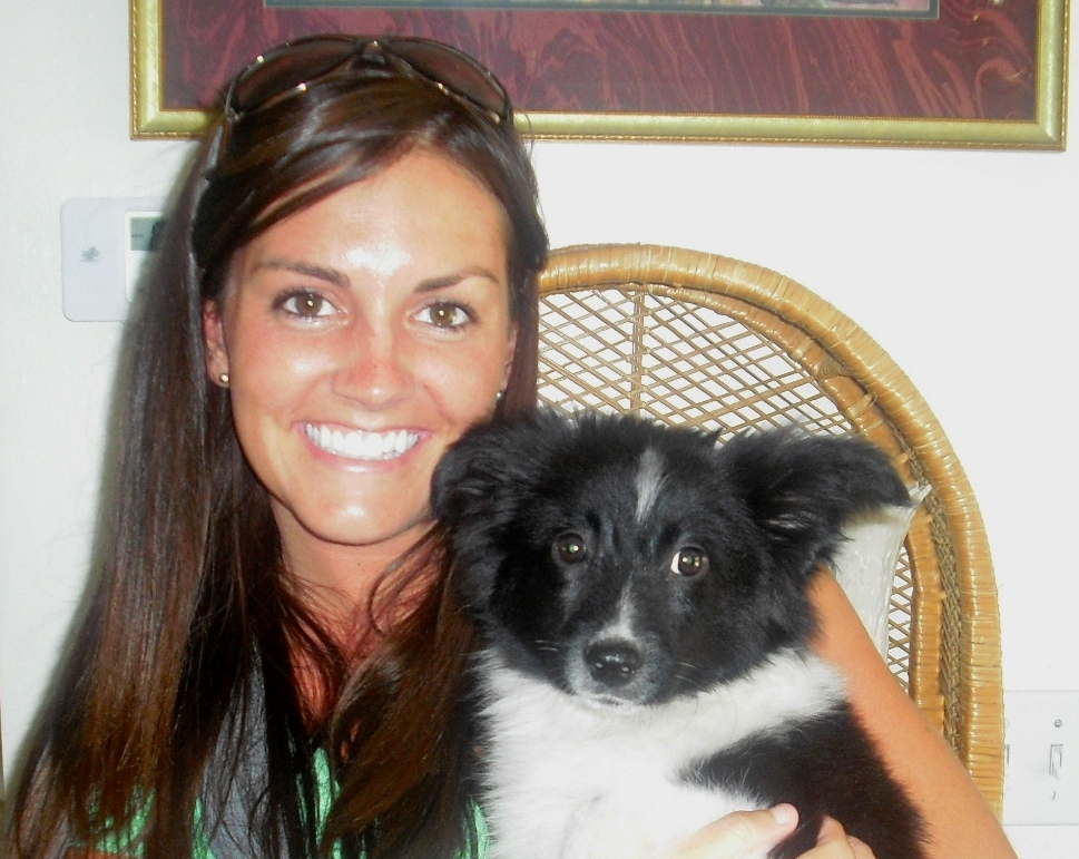 Flapper the Border Collie Puppy ~ Adopted