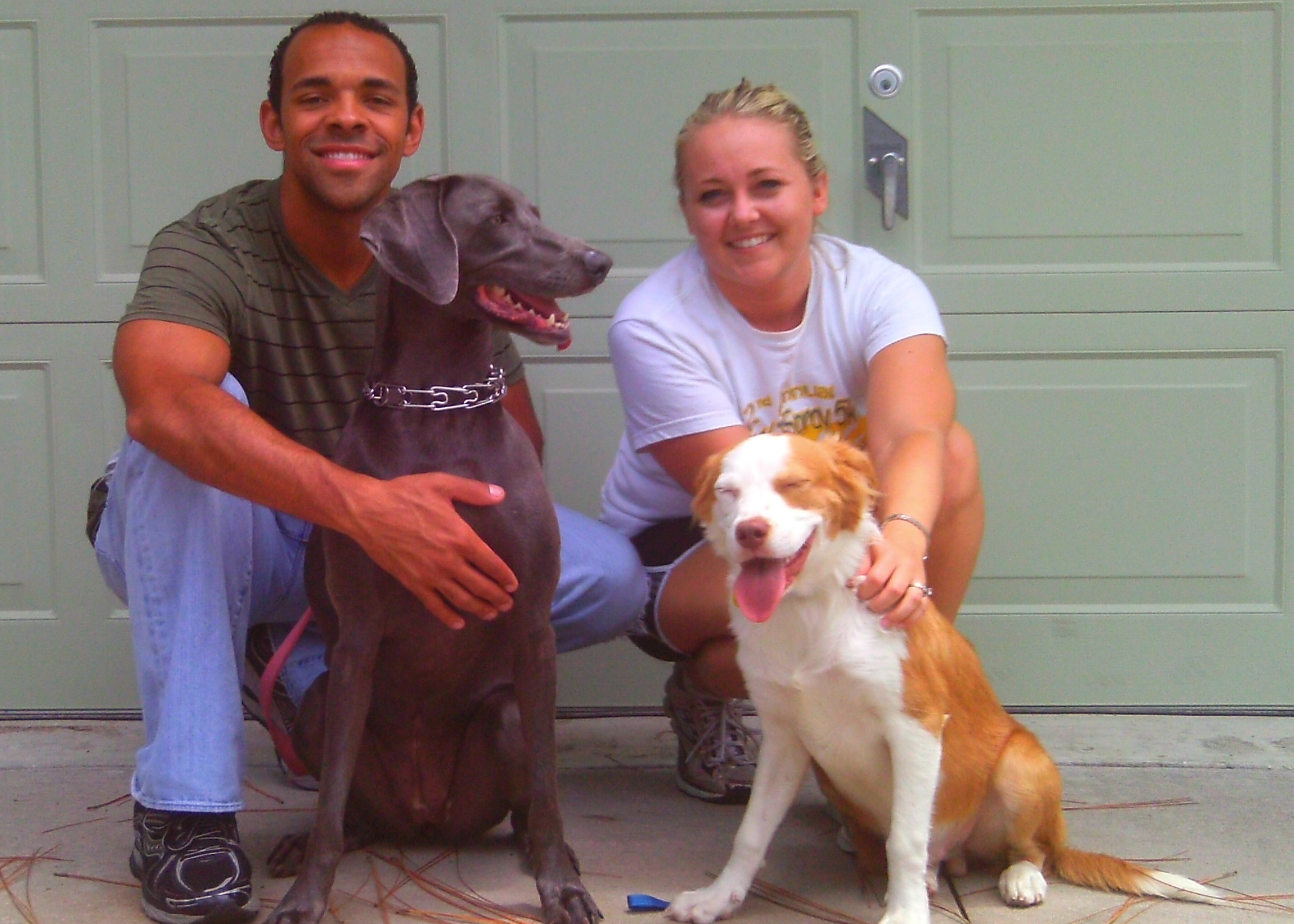 Cheez-It, the Brittany Spaniel puppy ~ Adopted!