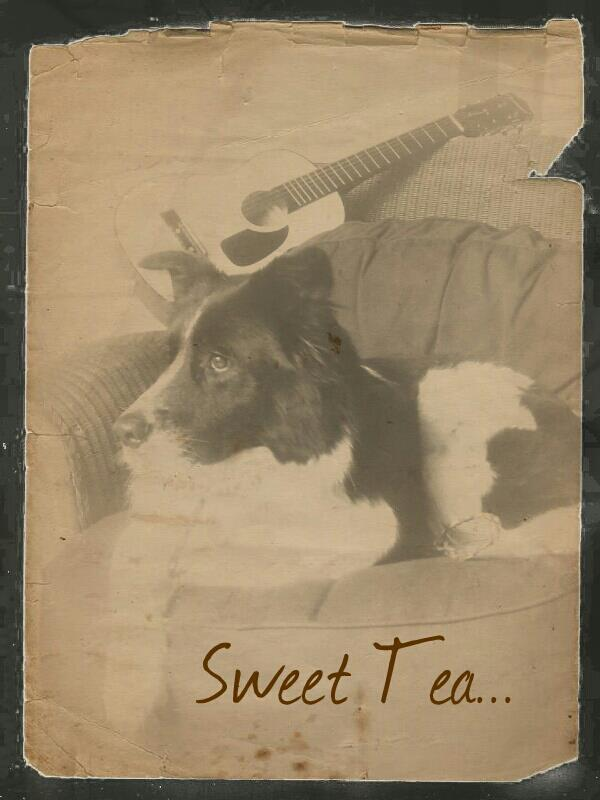 Sweet Tea~Adopted