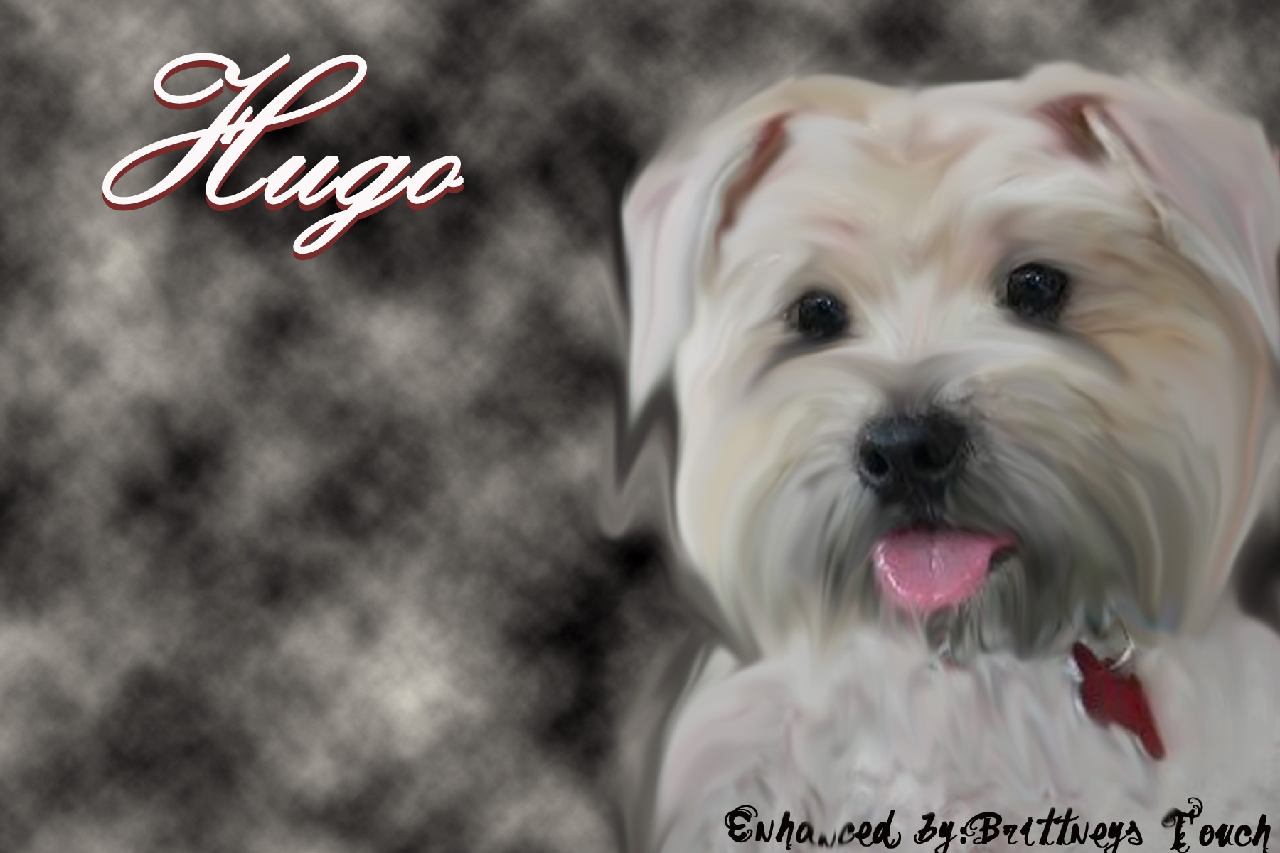 Here Hugo~Adopted