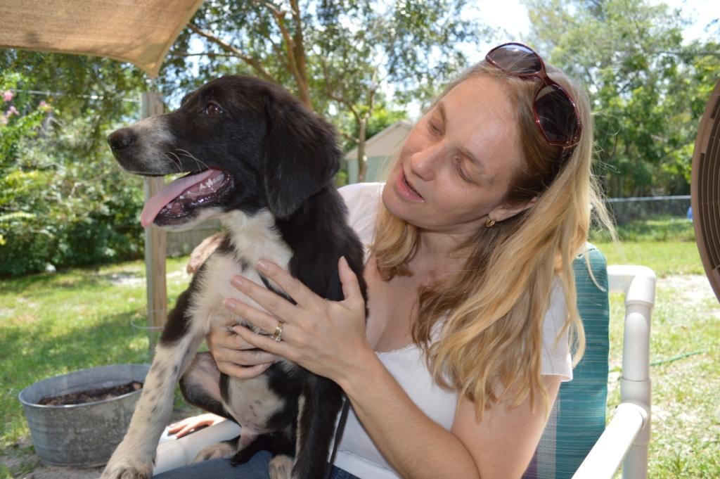 Jagger~Adopted