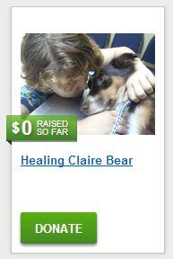 Healing Claire Bear