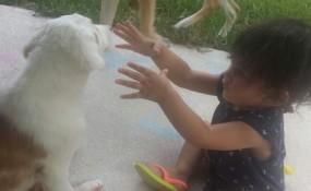 """my little puppy!"" ""my tiny human!"""