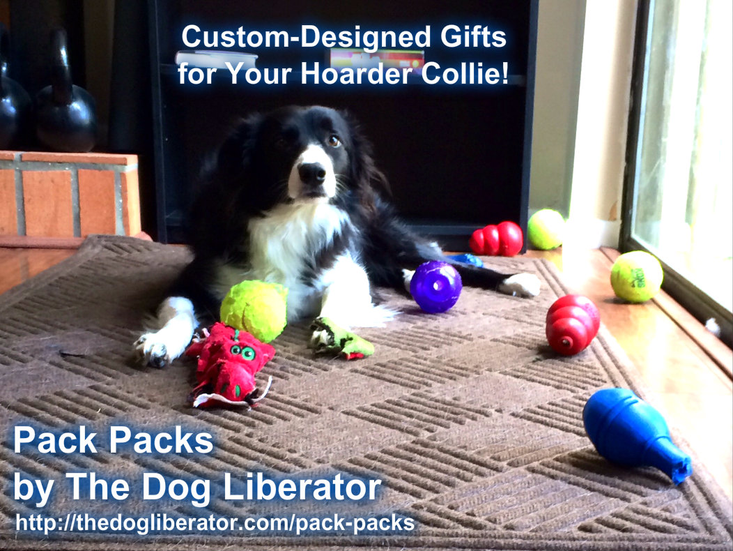 Pack Packs, the Gift Your Dog Really Wants!
