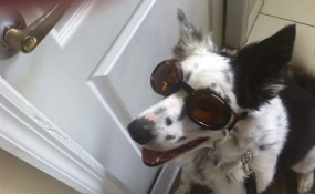 One cool dude!