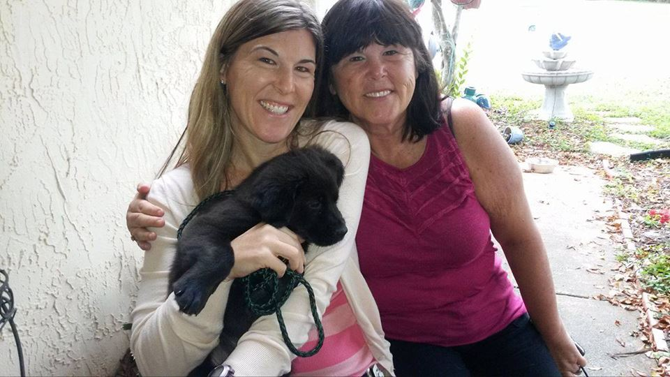 Francois ~ Adopted!