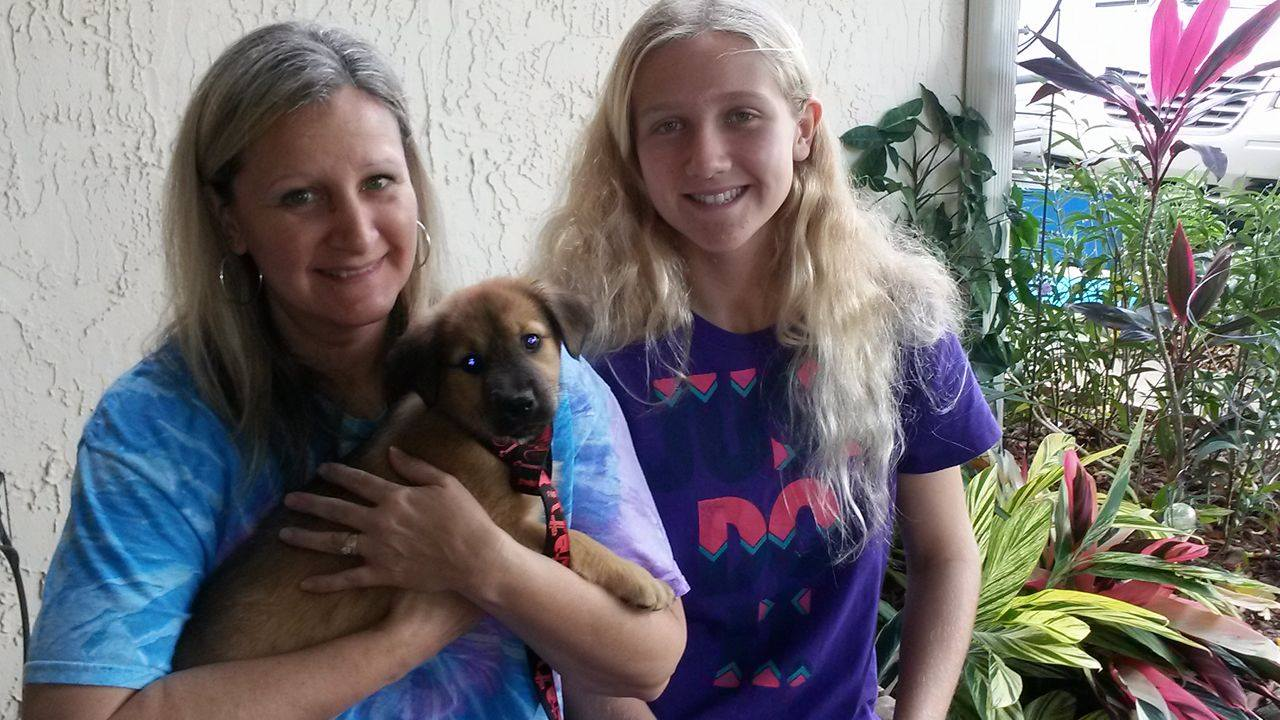 Suzette ~ Adopted!