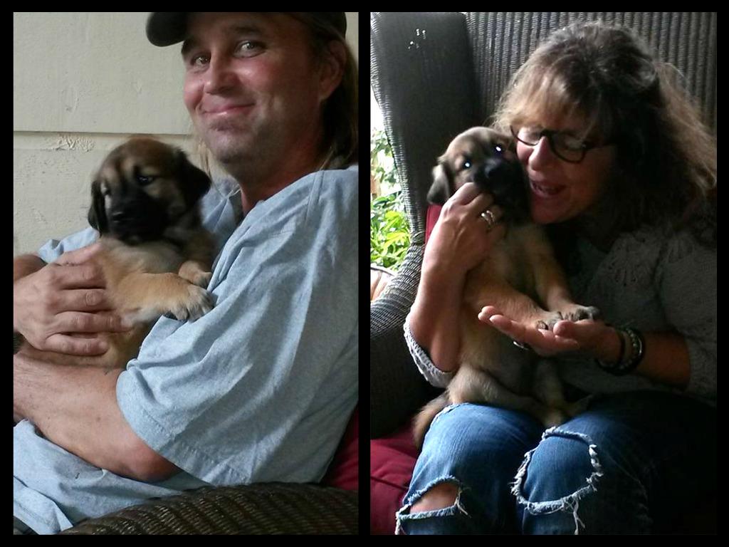 Édith Piaf ~ Adopted!