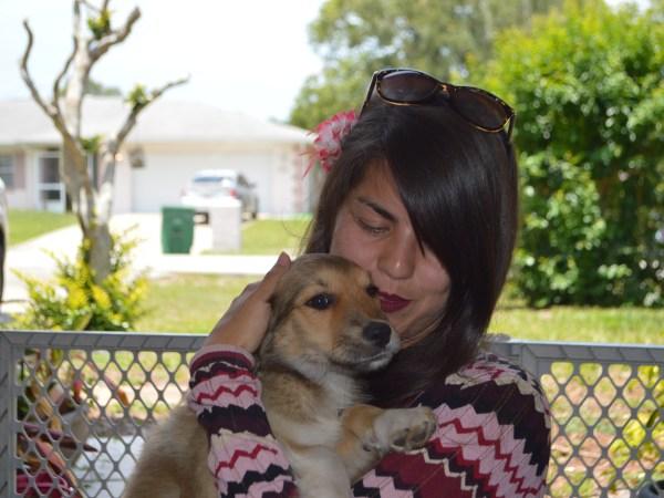 Hera ~ Adopted!