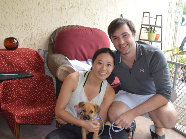Hermes ~ Adopted!
