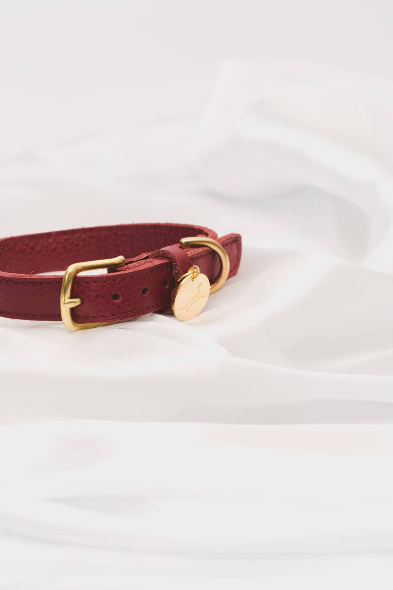 The Dog Musthaves - Collar Burgundy Detail