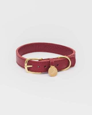 The Dog Musthaves - Collar Burgundy Extra Large