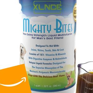 Mightybites Liquid Multivitamin