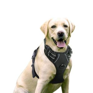 Rabbitgoo Dog Harness Best Harness for small dogs