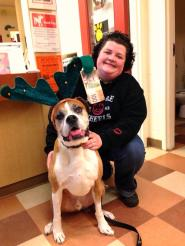 Romeo's Bucket List: Day 10-Paw deliver a cash donation to my less fortunate doggie friends at the Coquitlam Animal Shelter